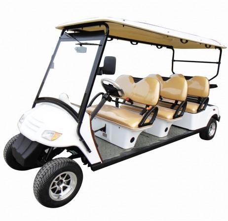 street legal cart rentals