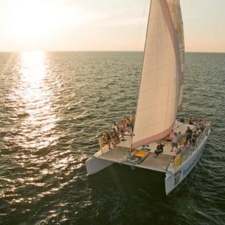 Sunset Dolphin Sail Aboard The Privateer Catamaran