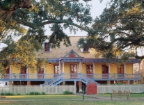 Laura or Oak Alley Plantation Tour From New Orleans