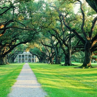 Laura and Oak Alley Plantation Combo Admission - Drive Out Tickets
