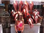 Kid-Friendly Party Boat Fishing in Destin, FL