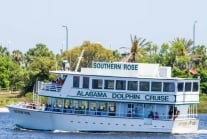 Southern Rose Dolphin Cruise