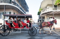 French Quarter Carriage Ride with Optional Cemetery Tour