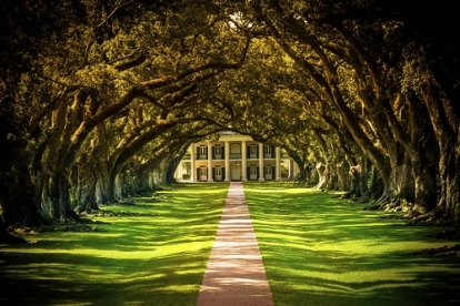 Oak Alley or Laura Plantation Tour From New Orleans By Southern Style Tours