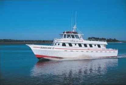 Dolphin Adventure Cruise Aboard The Hurricane II