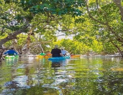 Island 'Ting Kayak and Snorkel Tour by Sebago Watersports