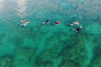 Triple Combo Snorkeling, Dolphin, and Sunset Cruise
