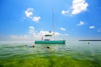 Java Cat Sail, Kayak, & Snorkel Half Day Eco Tour with Key West Eco Tours