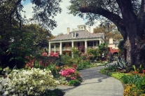 Houmas House Plantation From New Orleans By Grayline