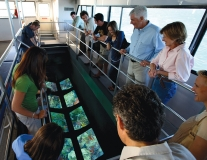Glass Bottom Boat Reef & Eco Tour