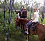 Horseback Trail Rides 30A-Destin