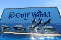 Gulf World Marine Park Tickets